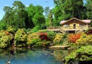 3D lake cabin