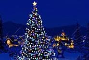 christmas treee