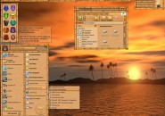 Bamboo Orange Windows Blind Theme