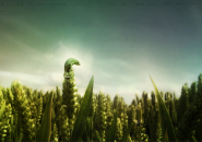 Smooth Frog On Top Grass Rainmeter Skin For Windows 7