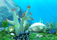 UnderWater Life2 aquarium screensaver