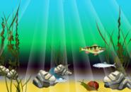 Cartoon Fish Screensaver
