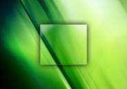 Green Leaf Windows 7 Logon Screen