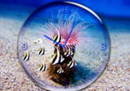 Sea Depth Clock Screensaver
