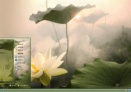lotus theme for windows 7