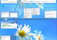 RTM Theme Windows 7 Visual Styles
