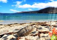 Waves Sand Screensaver