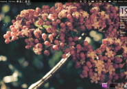 GaConky Rainmeter Theme for Windows7