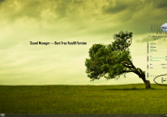 Sound Manager Rainmeter Skin
