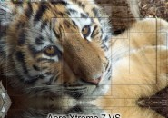 Aero Xtreme Visual Style for Windows7