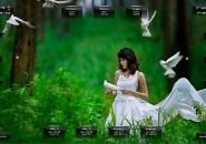 Dove Rainmeter Theme for Windows7