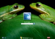 Green Frogs Logon Screen for Windows7
