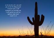 Comforting bible verse