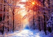 The-Four-Seasons-Theme