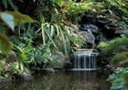 living waterfalls 2