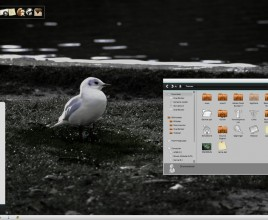 Autumn in Noir theme for windows 7