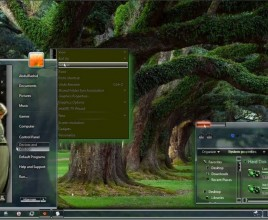 Fairy transformation theme for windows 7