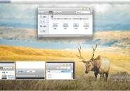 Lion plus mini theme for windows 7