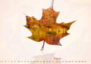 Calendar Autumn Screensaver