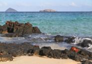 Galapagos Crabs Screensaver