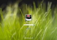Grassy Bliss Logon Screen For Windows 7