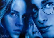 Harry Rob Hermione Screensaver