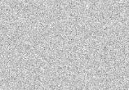 TV White Noise Screensaver