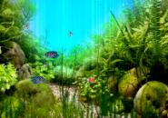 UnderWater2 Aquarium Screensaver