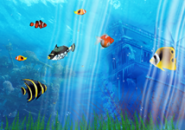 Underwater Aquarium4 Screensaver
