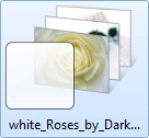 white roses themepack for windows 7