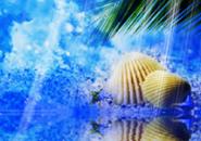 Maritime Background Screensaver