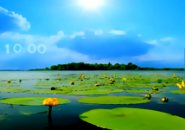 Summer Landscape2 Screensaver